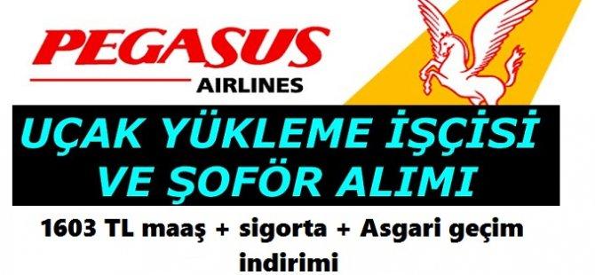 Pegasus Hava Taşımacılığı A.Ş lise mezunu şoför ve işçi ALIMI 2018