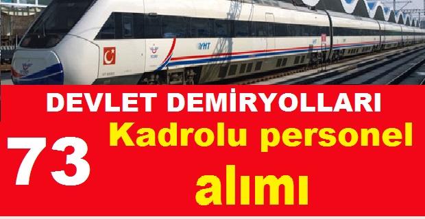 Devlet Demiryolları 73 Kadrolu İşçi Personel Alımı Yapacak