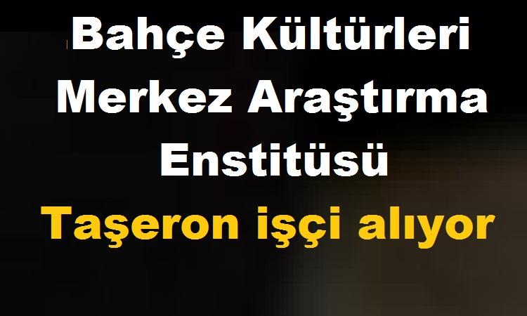 Atatürk Bahçe Kültürleri Merkez Araştırma Enstitüsü Taşeron işçi kariyer ilanı