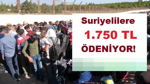 ŞOK İddia! Suriyelilere Kişi Başına 1.750 TL Ödeniyor