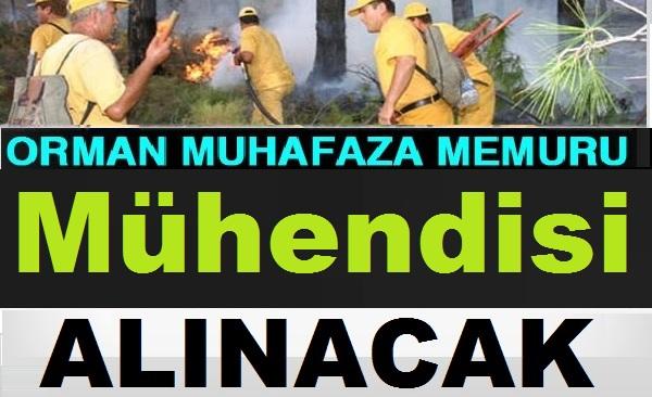 1150 Orman Mühendisi ve 2 bin 700 Orman Muhafaza Memuru Alımı Mülakatları başlıyor