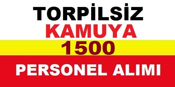 Trabzon İşkur 2019 TYP 1500 Kamu Personeli Alımı