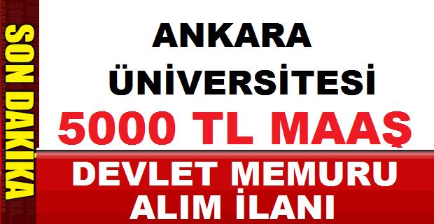 Ankara Üniversitesi TÖMER Kamu Personeli Alım ilanı