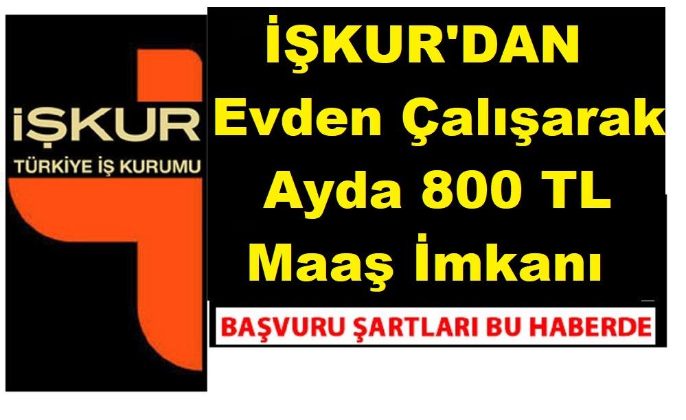 İŞKUR'dan Evde Çalışarak Ayda 800 TL Maaş İmkanı