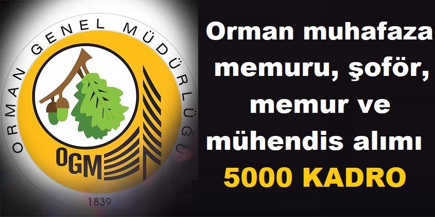 Orman Genel Müdürlüğü KPSS ile 5000 4B'li personel alımı yapılacak