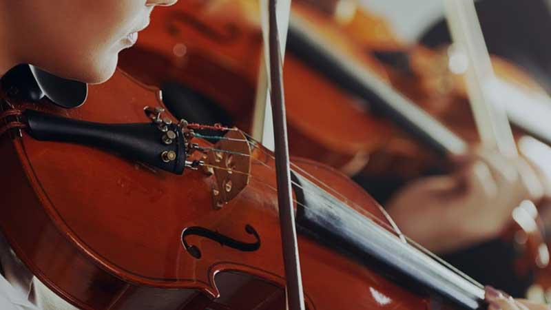 Beden eğitimi, resim ve müzik zorunlu ders olmaktan çıkıyor