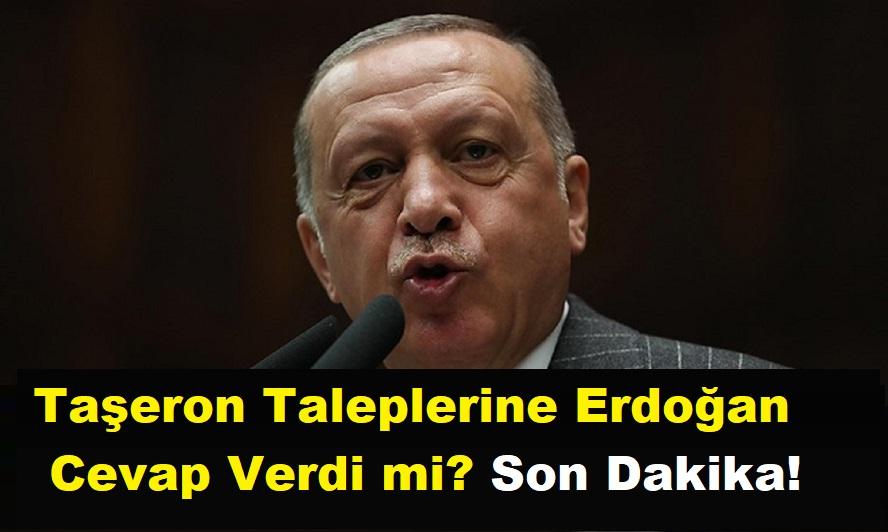 Kadroya Geçen Taşeron Taleplerine Erdoğan Cevap Verdi mi? Son Dakika!