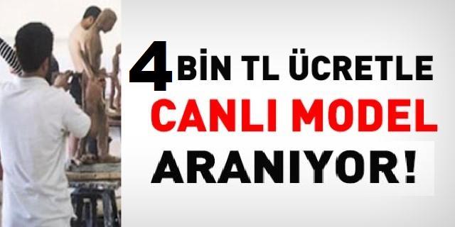 Erciyes Üniversitesi Canlı Model kadrosunda sözleşmeli kamu personeli alımı