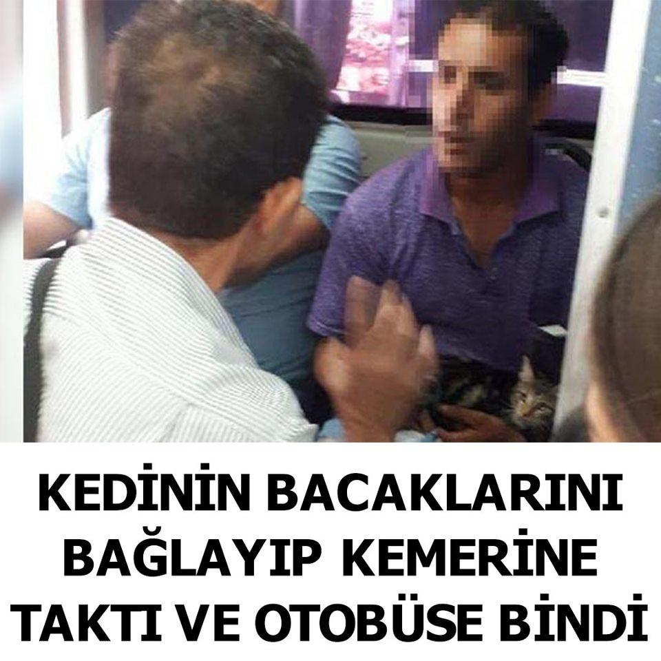 Bu kadarına da pes dedirten olay Antalya'da yaşandı