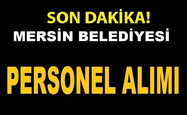Mersin Büyükşehir Belediyesi Büro Personeli Büro Memuru Avukat ve İşçi Alıyor