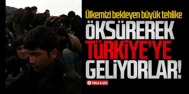 Öksüren mülteciler Türkiye'ye geçiyor
