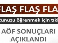 Anadolu Üniversitesi AÖF Final Sınavı Sonuçları
