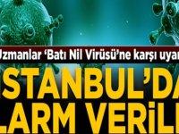 Uzmanlar, 'Batı Nil Virüsü'ne karşı uyardı