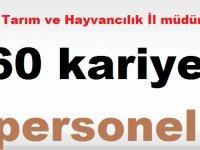 Ankara, Antalya, Gıda Tarım ve Hayvancılık İl müdürlüğü 60 Personel alıyor