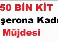 KİT Çalışanı 50 BİN Taşerona Kadro Müjdesi: Resmi Gazetede