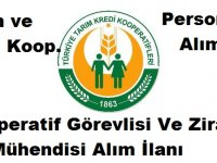 Tarım ve Kredi Kooperatifleri Çok Sayıda Mühendis ve Kamu Personeli Alımı Yapıyor