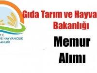 Tarım ve Orman Bakanlığı Kamu Personeli Alımı
