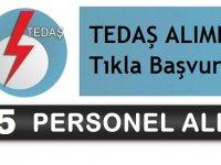 TEDAŞ Kadrolu 85 Devlet Memuru Alımı