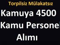 KPSS şartsız Torpilsiz Mülakatsız Kamuya 4500 Kamu Personeli Alımı