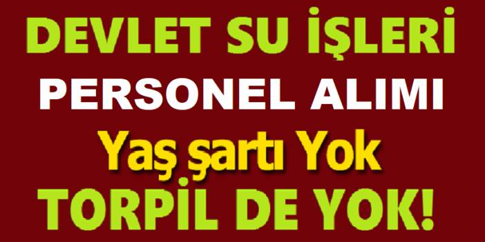 DSİ Daimi Sürekli 4/D Kamu işçisi Alacaktır 73 Kişi Alınacak