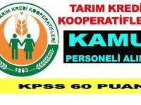 Tarım Kredi Kooperatifleri Ziraat Mühendisi ve Kooperatif Memuru Kamu Personeli Alımı Yapıyor