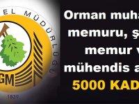 3900 Orman muhafaza memuru, şoför, memur ve mühendis alımı Mülakatla, 1100 Alım ise Mülakatsız olacak