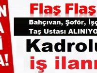 Muğla Datça Belediyesi Daimi Bahçıvan, Şoför, İşçi ,Taş Ustası Alıyor