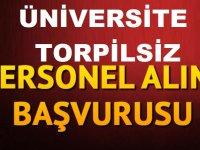Üniversite Torpilsiz Güvenlik Görevlisi ve Büro Memuru Alıyor - İzmir iş ilanları