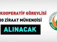 Tarım Kredi İzmir Birliği 30 kooperatif görevlisi ve 30 mühendis alacak