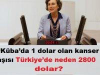 """Filiz Kerestecioğlu: """"Küba'da 1 dolar olan kanser aşısı Türkiye'de neden 2800 dolar?"""""""