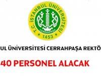 İstanbul Üniversitesi Cerrahpaşa 40 Sağlık Personeli Hemşire Alıyor