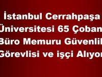 İstanbul Cerrahpaşa Üniversitesi 65 Çoban ,Büro Memuru Güvenlik Görevlisi ve işçi Alıyor