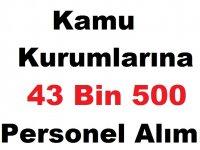 Kamu Kurumlarına 43 Bin 500 Personel Alımı Yapılacak