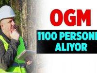 Tarım ve Orman Bakanlığı sözleşmeli 1.150 Orman Mühendisi alım ilanı değiştirildi!