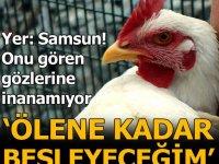 Dünyadaki milyonlarca tavuktan ayrılan özelliği sayesinde sahibi ölünceye kadar satmayı düşünmüyor.