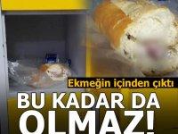 Bu kadar da olmaz! Ekmeğin içinden çıktı.