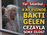 Yer: İstanbul! 4 ay evinde baktı gelen cezayla şoke oldu