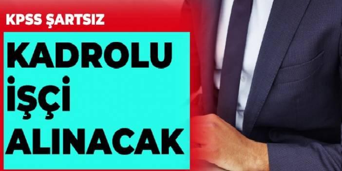 Sakarya Üniversitesi İŞKUR Vasıtasıyla Daimi işçi ilanı yayınlamıştır.