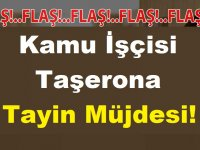 Kamu İşçisi 4/D Taşerona Tayin Müjdesi!
