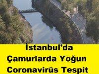 İstanbul'da Çamurlarda Yoğun Coronavirüs Tespit Edildi