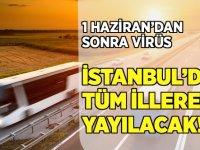 Virüsü İstanbul'dan tüm illere yayacaklar