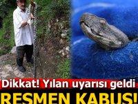 Trabzon dahil bir çok Şehirlerde yılan kabusu! Uyarı geldi.