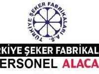 Türkiye Şeker Fabrikaları 4/D Kamu Personeli Alımı Temmuz 2020