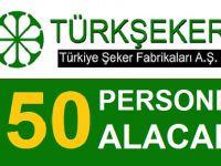 Türkiye Şeker Fabrikaları 250 sözleşmeli kamu personeli alımı